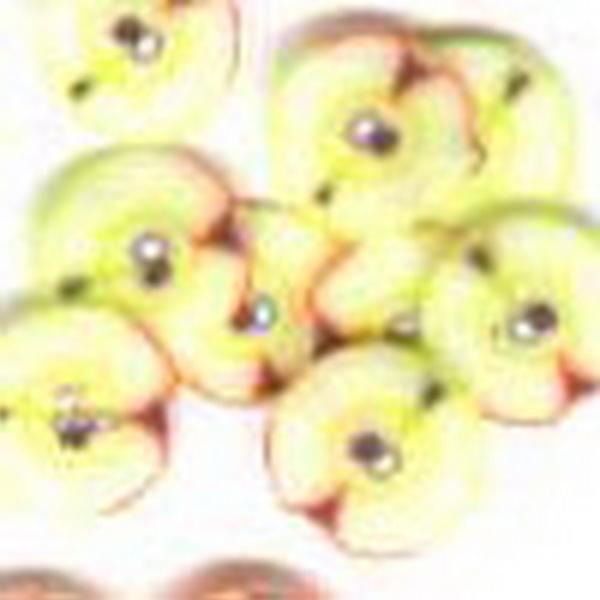 Gumi gyümölcsdísz - őszibarack