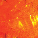 Luxus kagylólap narancssárga - 5